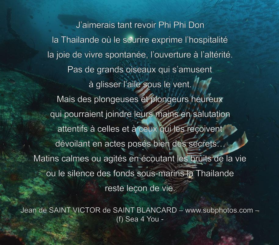web-Phi-Phi-Don